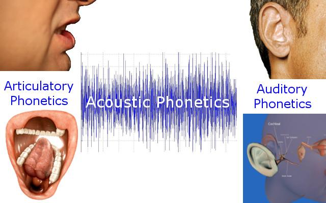 What is Phonetics?